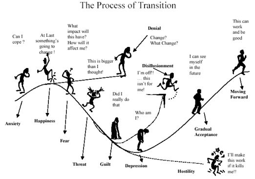 satir change process model learning from dogs