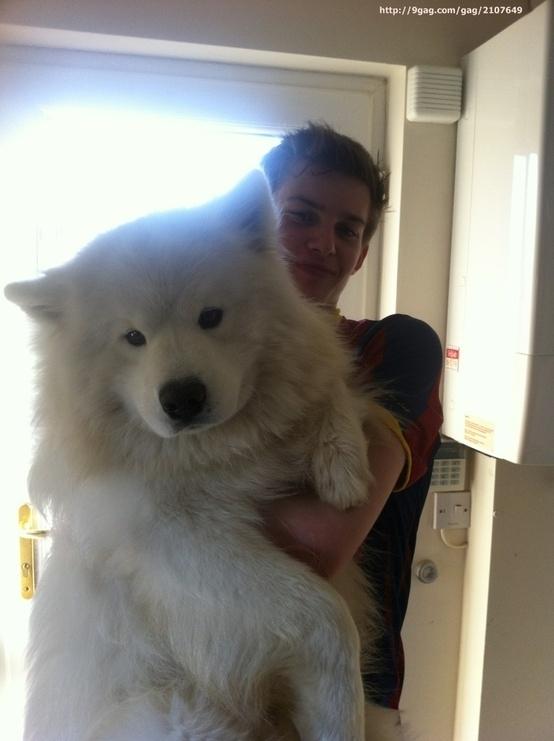 bigdog4