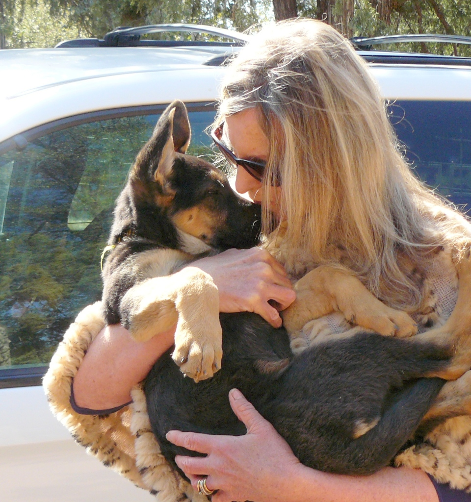 10-week-old little Cleo experiencing Jeannie's love for her dogs.