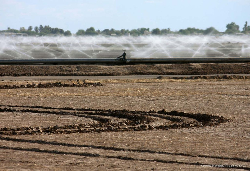 Approximately 69% of the available water supply in Arizona is used for agriculture.