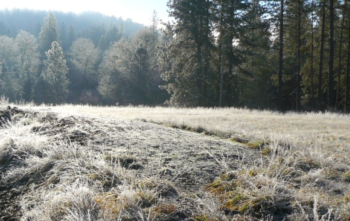 A frosty yet sunny morning.