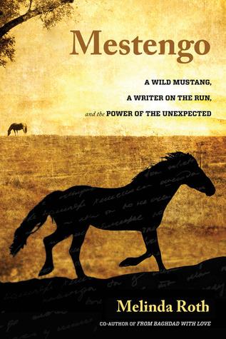 Mestengo book cover.