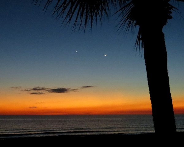 Planet Venus and young moon on January 21, 2015, as captured by Cathy Emmett Palmer in Panama City Beach, Florida.