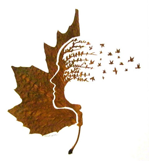Leaf's Mind. I'm very attentive to beautiful fallen leaves. Suddenly,  I started SEEING them, not simply looking at them.