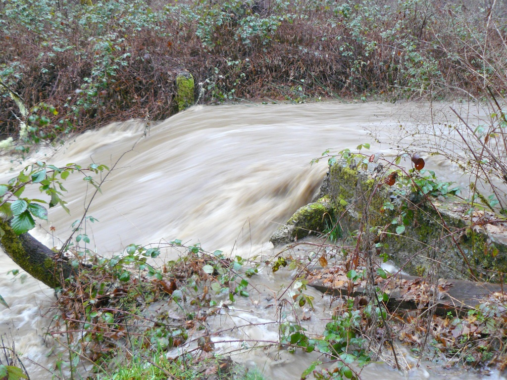Bummer Creek in full flood - this photograph is of the Creek just 50 yards upstream of the bridge.