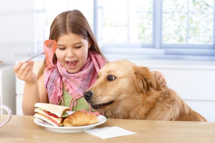 Image Courtesy of Shutterstock.com