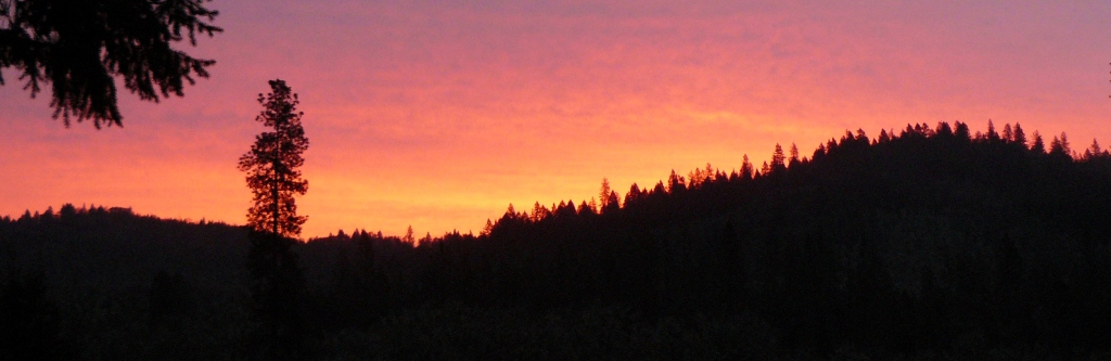 A golden dawn as seen from our bedroom window at home - taken Friday 13th, March, 2015.