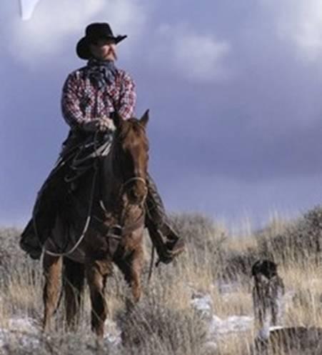 oldcowboy