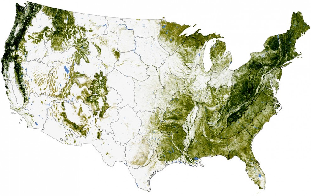 The concentration of biomass stored in trees in the U.S. The darkest greens reveal the areas with the densest, tallest, and most robust forest growth. (Photo: NASA)