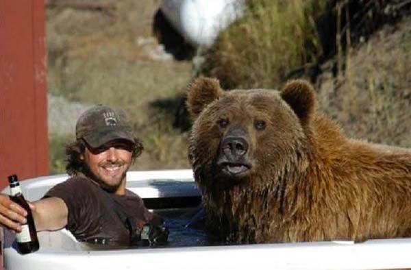 bears18