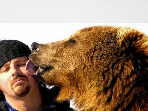 bears7