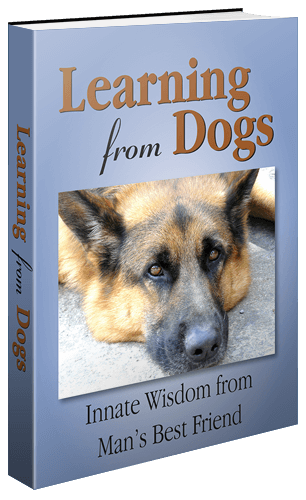 Get the Learning from Dogs book now