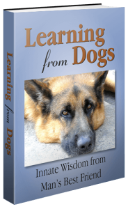 LearningFromDogs_3DBook_500x