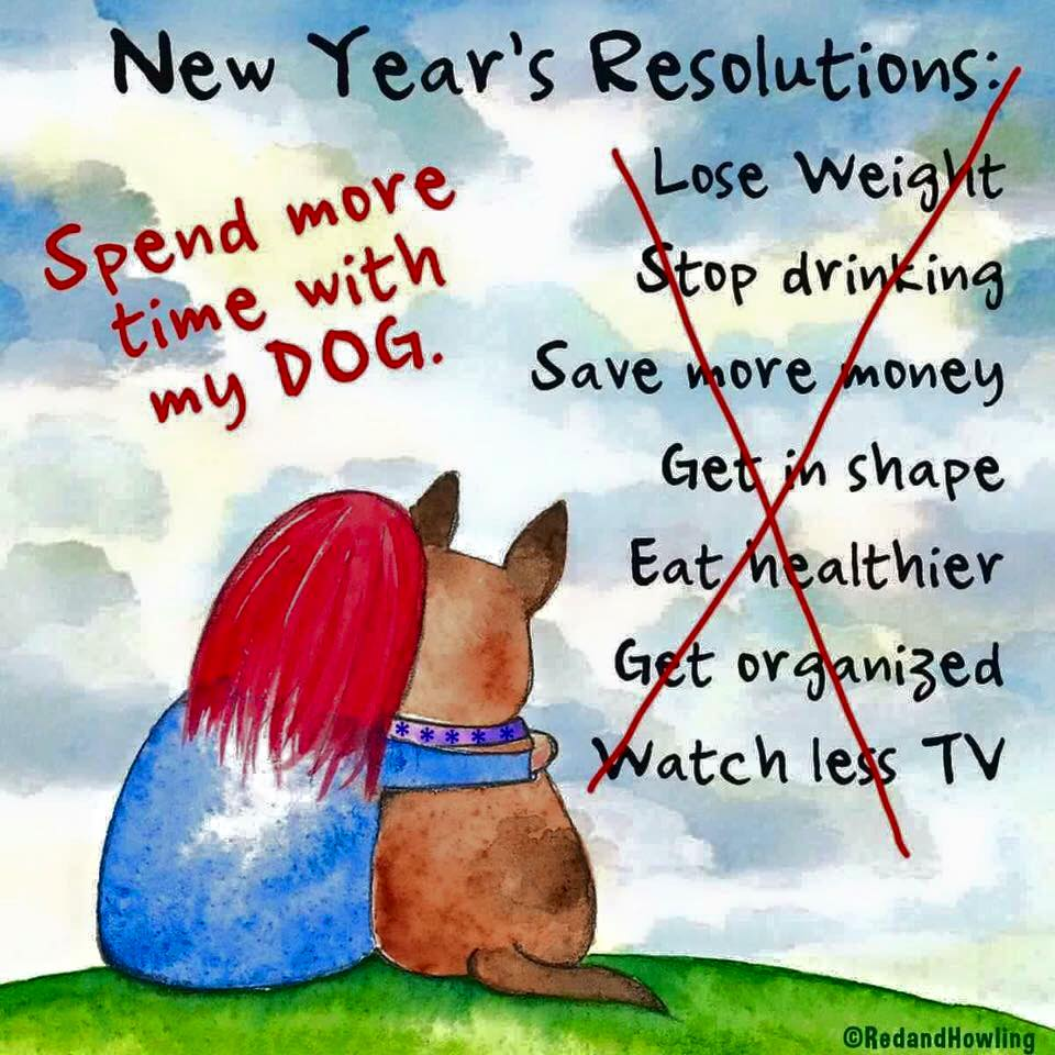 NY resolution