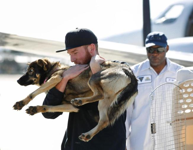 Luna was found Tuesday on San Clemente Island, a Navy-owned training base 70 miles off San Diego.
