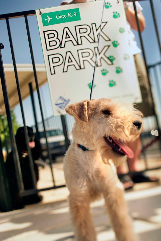 Reno-Tahoe International Airport's outdoor dog facility, called the Bark Park, opened 2004. (Photo: Reno-Tahoe International Airport/Facebook)