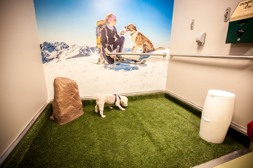 The Colorado airport has pet relief rooms on each of its concourses located on the airside after the TSA checkpoints. (Photo: Denver International Airport)