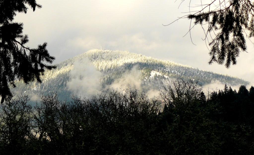 Mount Sexton, Oregon.