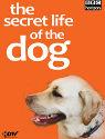 secret-life-dog
